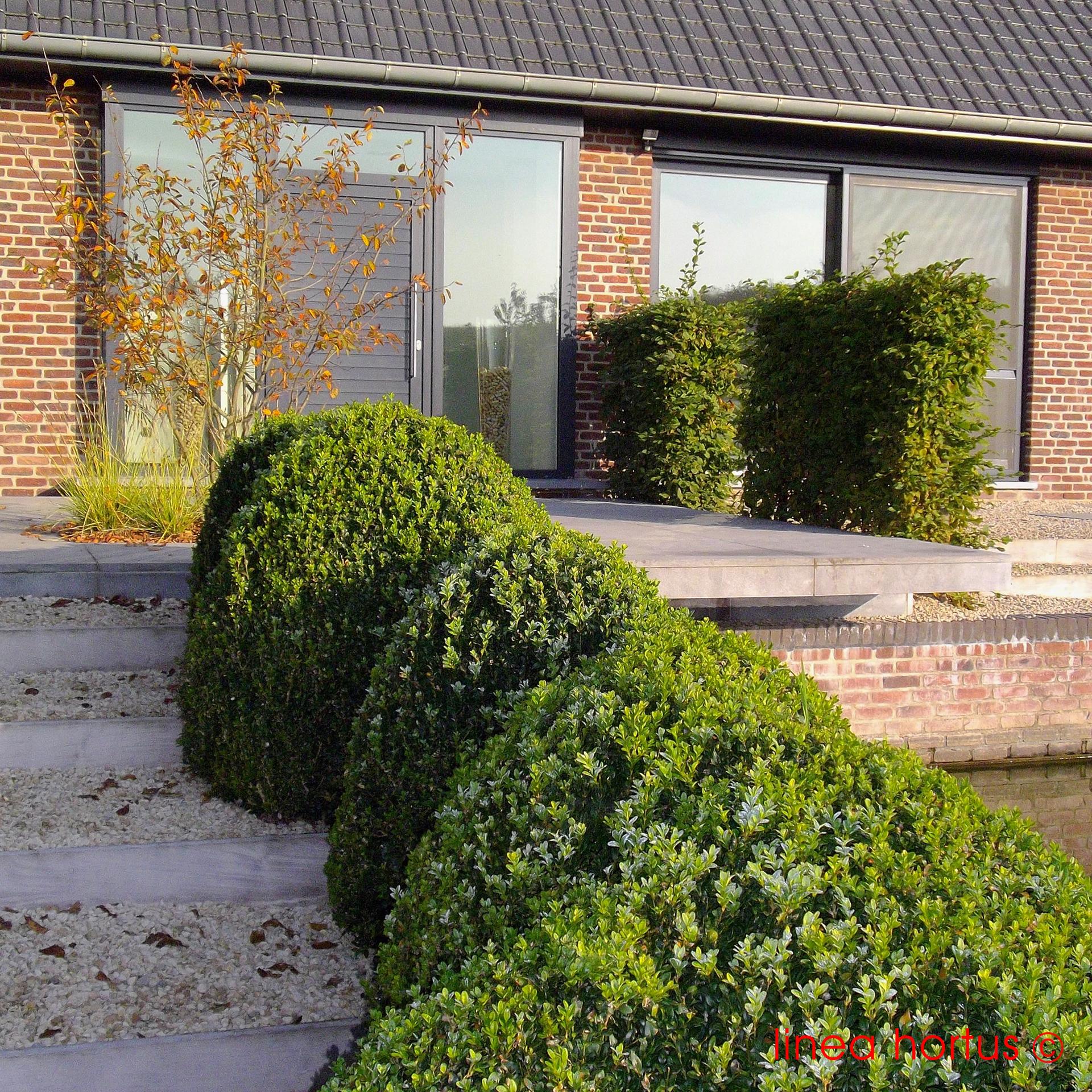 dierenhotel_bever_8.jpg